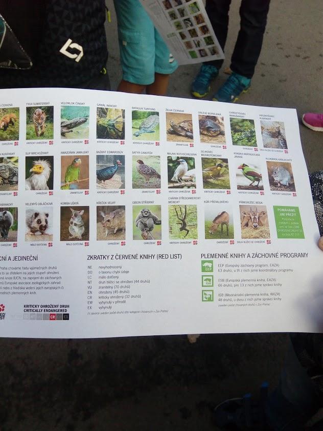 5 C V Zoo Praha